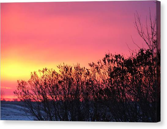 Beauty In The Morning Canvas Print