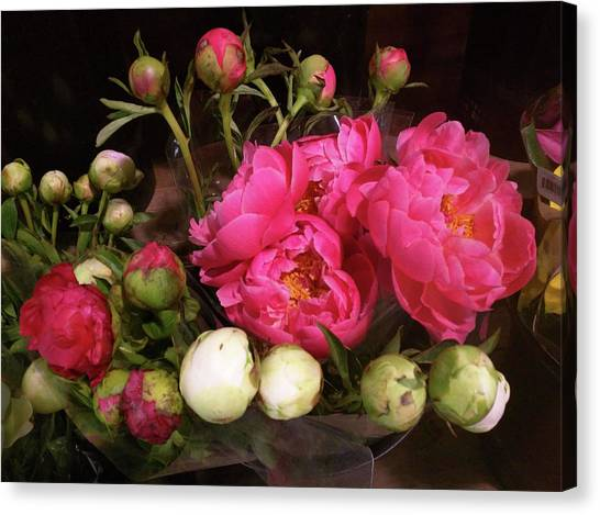 Beauty In The Whole Foods Flower Dept. Canvas Print