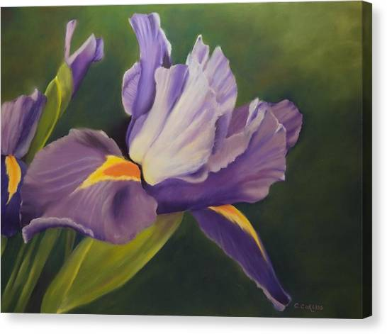 Beauty Is In The Iris Canvas Print