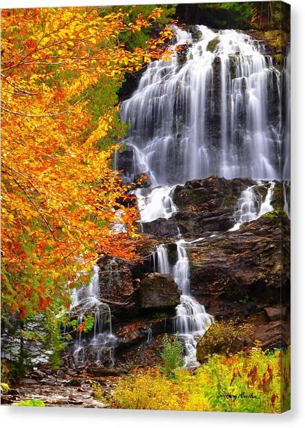 Beaver Brook Falls Canvas Print
