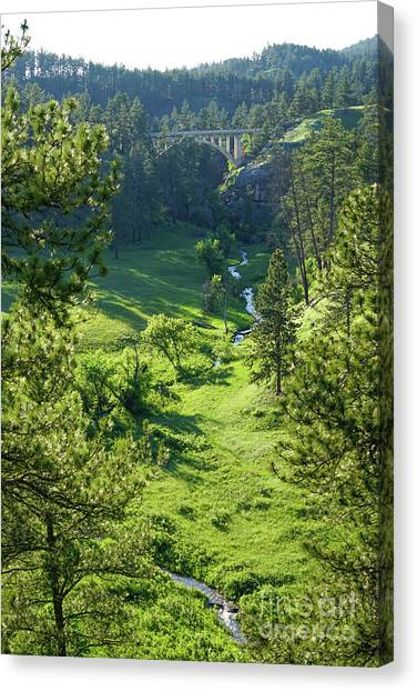 Beaver Creek In The Spring Canvas Print