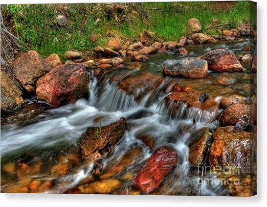 Beaver Creek Canvas Print
