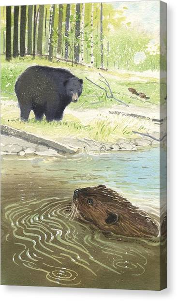 Beaver Canvas Print by Denny Bond