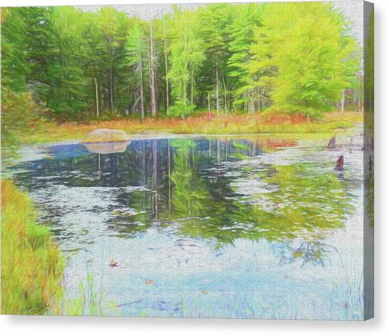 Beaver Pond Reflections Canvas Print