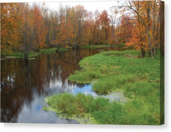 Beaver River Colors Canvas Print