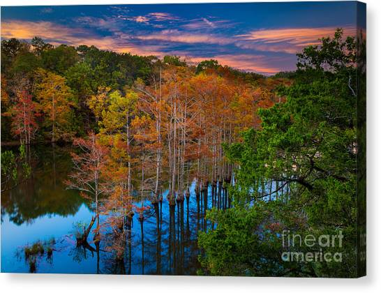 Beavers Canvas Print - Beavers Bend Twilight by Inge Johnsson