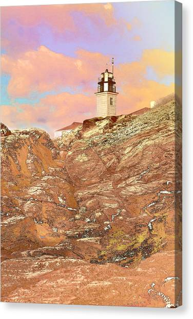 Beavertail Looking Surreal Canvas Print