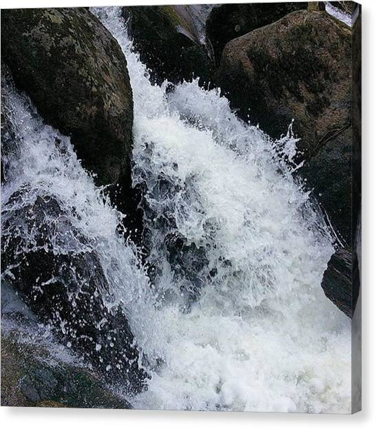 Finches Canvas Print - #beckyfalls #nationalpark #waterfall by Gary Finch