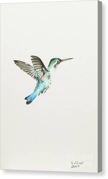 Bee Hummingbird Canvas Print