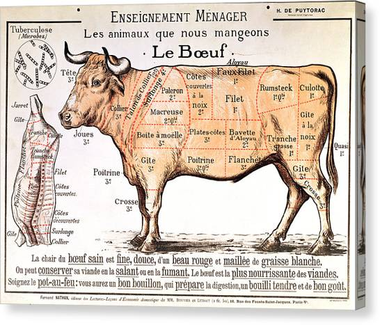 Meat Canvas Print - Beef by French School