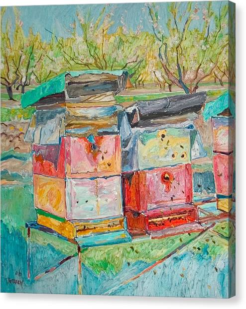 Beehives In Orchard Canvas Print by Vitali Komarov