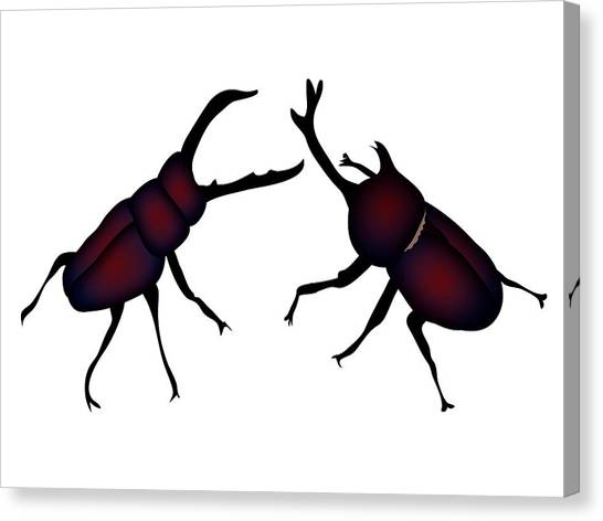 Canvas Print - Beetle And Stag Beetle by Moto-hal