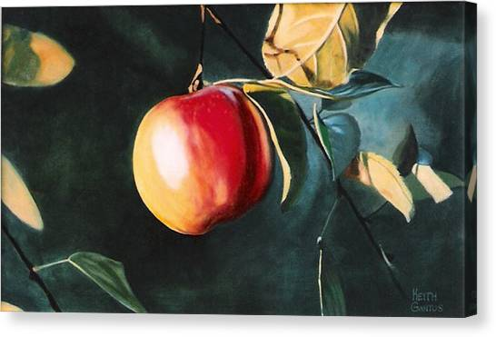 Before The Fall Canvas Print