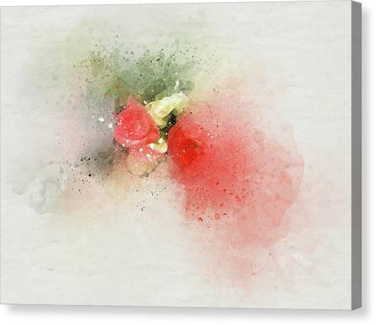 Begonia 3s Canvas Print