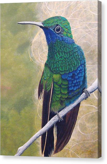 Beija Flor And Nest Canvas Print by Jeffrey Oldham