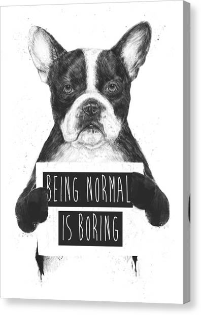 Black Canvas Print - Being Normal Is Boring by Balazs Solti