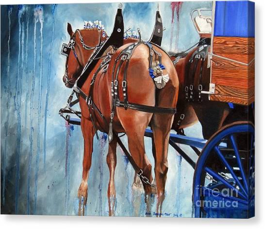 Belgian Blues Canvas Print