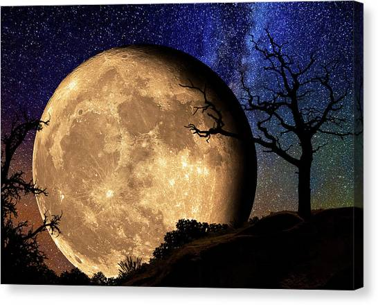 Bella Luna From Another World Canvas Print