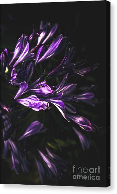 The Nile Canvas Print - Bells And Flowers by Jorgo Photography - Wall Art Gallery