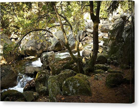 Below Vernal Falls  Canvas Print by Chris Brewington Photography LLC