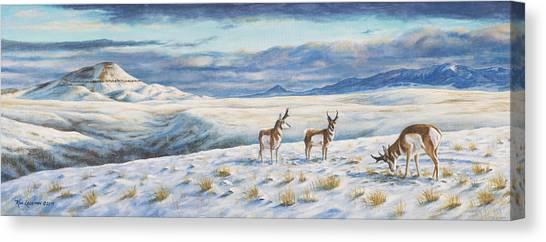Belt Butte Winter Canvas Print