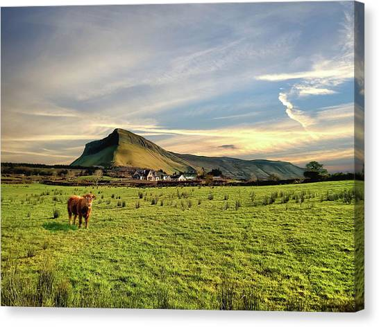 Benbulben From Henry's Bar Canvas Print