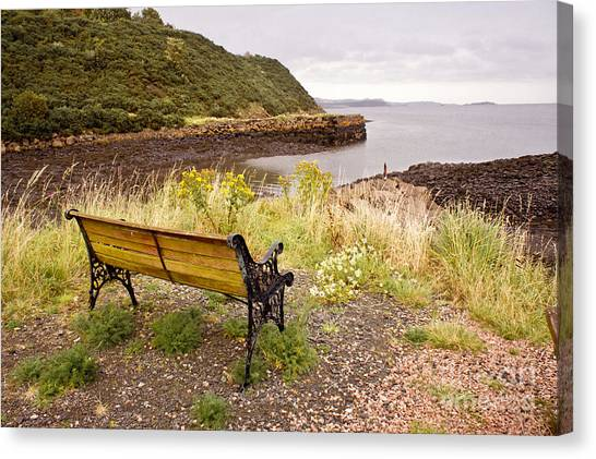 Bench At The Bay Canvas Print