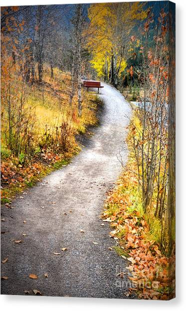 Bench On A Hill Canvas Print