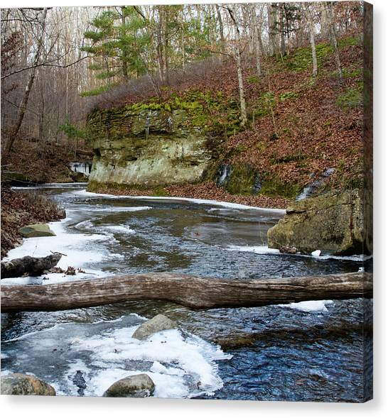 Bend In Creek Canvas Print