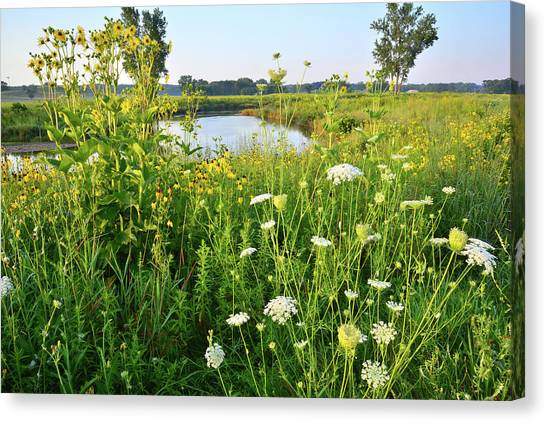 Prairie Sunrises Canvas Print - Bend In The Nippersink Creek by Ray Mathis