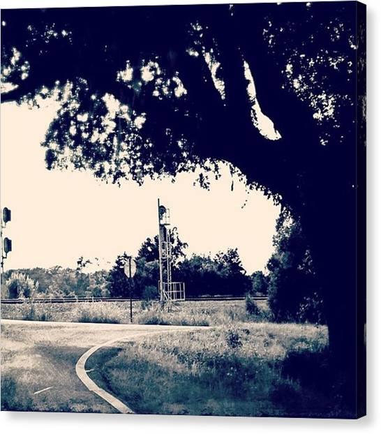 Roads Canvas Print - Bend #road #oaktrees #msgulfcoast by Joan McCool