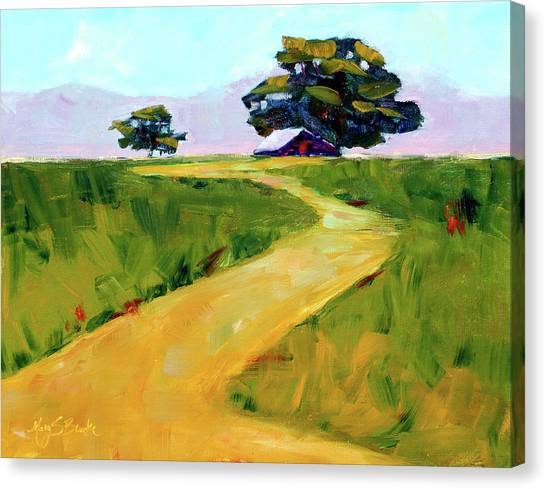 Beneath The Cottonwoods Canvas Print