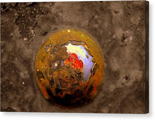 Beneath The Surface Canvas Print by Susan Moore