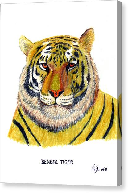 Bengal Tiger Canvas Print by Frederic Kohli