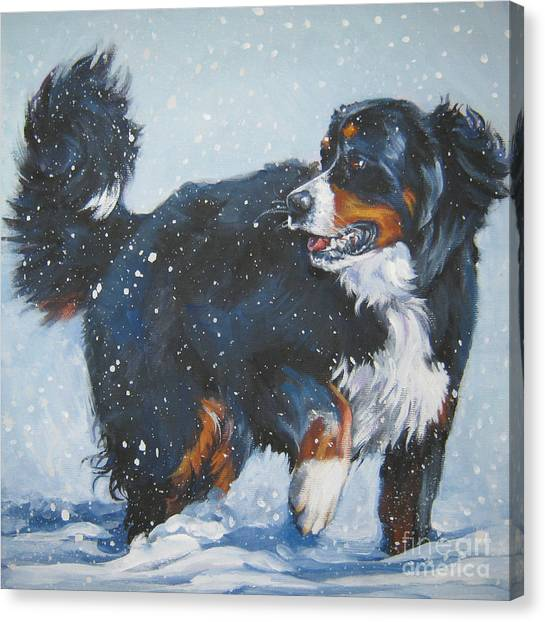Bernese Mountain Dogs Canvas Print - Bernese Mountain Dog In Drift by Lee Ann Shepard