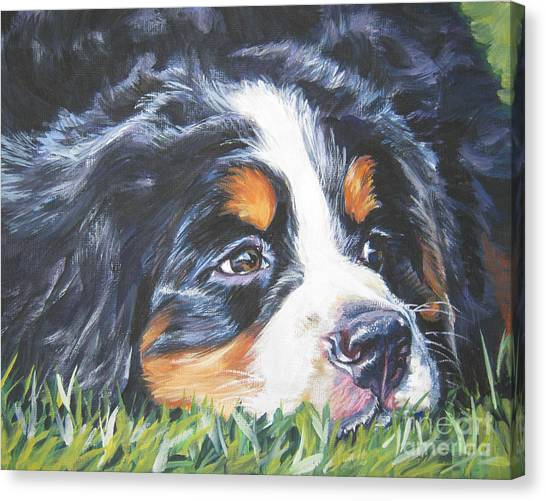Bernese Mountain Dogs Canvas Print - Bernese Mountain Dog In Grass by Lee Ann Shepard