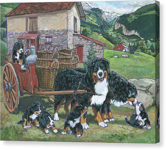 Bernese Mountain Dogs Canvas Print - Bernese Mountain Dog by Nadi Spencer