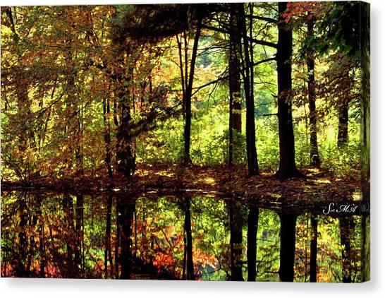Bernharts Dam Fall 006 Canvas Print