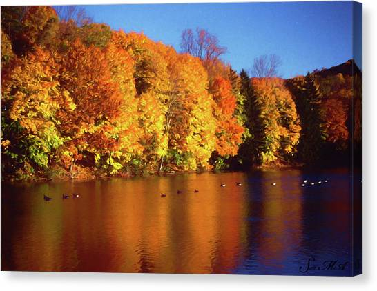 Bernharts Dam Fall 008 Canvas Print