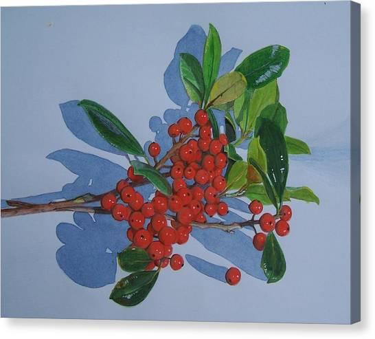 Berries Canvas Print by Constance Drescher