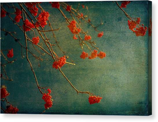 Berry Nice Canvas Print