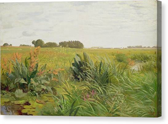 Marsh Grass Canvas Print - Between Geest And Marsh by Valentin Ruths