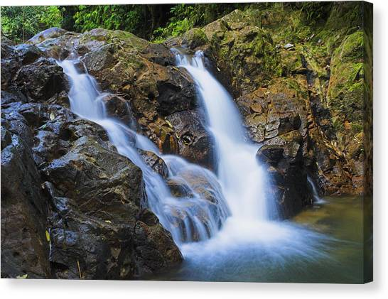 Bexon Waterfall In Color- St Lucia  Canvas Print