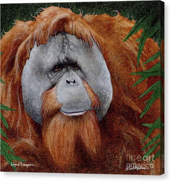 Orangutans Canvas Print - Beyond Rangoon... by Will Bullas