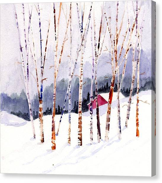 Beyond The Birch Thicket Canvas Print