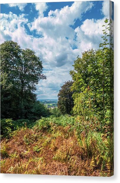 East Village Canvas Print - Beyond The Forest by Wim Lanclus