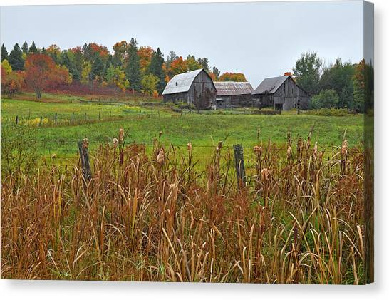 Gatineau Park Canvas Print - Beyond The Hill by Tony Beck
