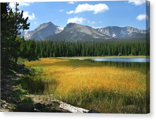 Autumn At Bierstadt Lake Canvas Print