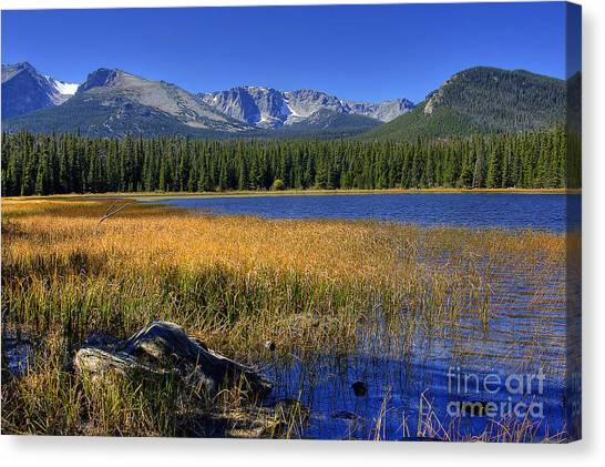 Bierstadt Lake Shoreline 2 Canvas Print