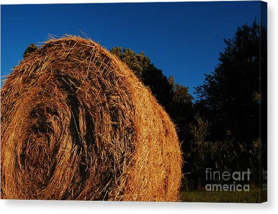 Big Bales Canvas Print by The Stone Age